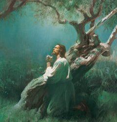 Jésus-Christ : L'incroyable Expiation