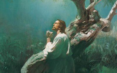 Les Mormons Croient-ils à la Grâce?