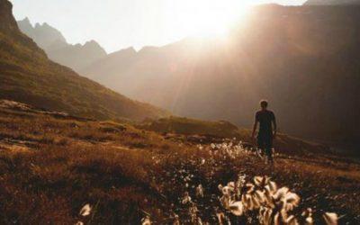 Où trouver la volonté de suivre Dieuet Jésus Christ?
